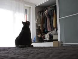 Acabar con la humedad en los armarios decoracion-de-salones Blog Decoracion
